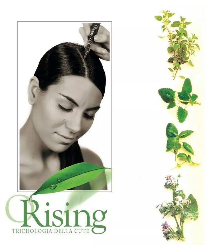 orising hajgyógyászat