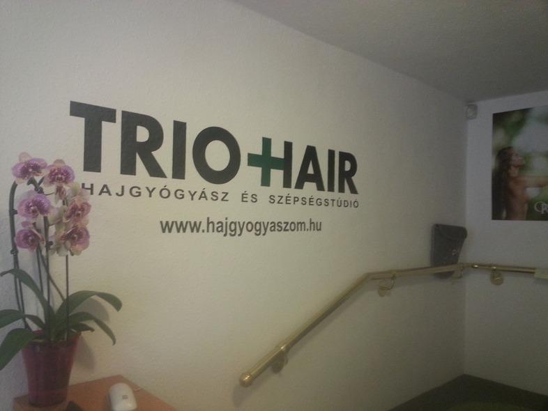 hajgyógysáz
