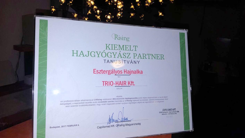 hajgyógyász-kiemelt-partner